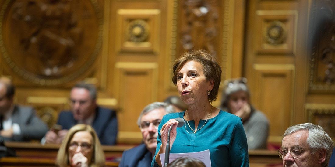 Catherine Procaccia en séance publique