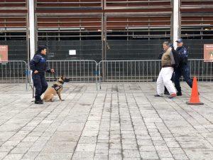 brigade canine villejuif